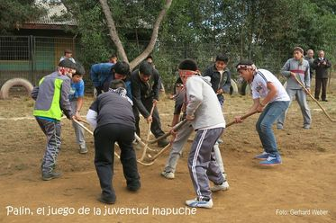 Palin, the game of Mapuche youth